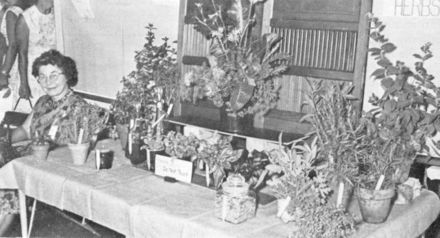 Herb Exhibit
